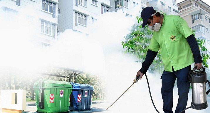 Hire beg bug pest control service in online